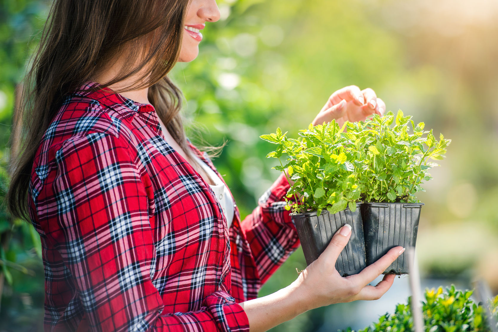 Starting And Maintaining A Thriving Garden May Seem Intimidating To Some,  But Itu0027s Easy! If You Sat Out Last Season Because You Didnu0027t Know What To Do  Or ...