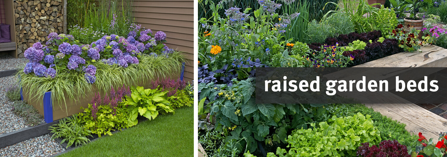 Raised Beds In The Garden Why They Matter And How To Build Them