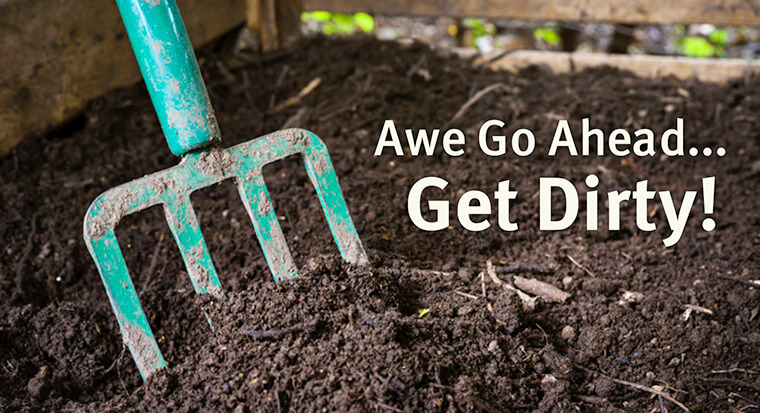 Be inspired blog california for All about soil